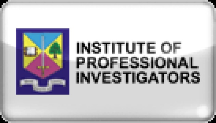 Caribbean Investigative Network Ltd.