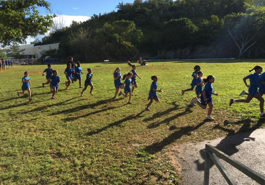 Harrington Sound Primary School
