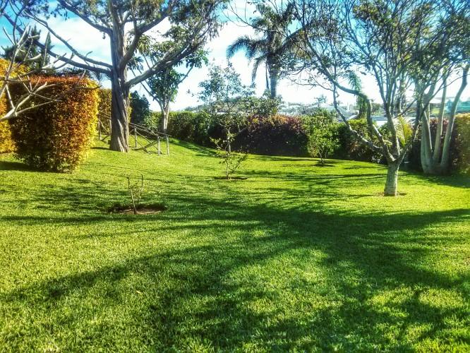 DV Landscaping