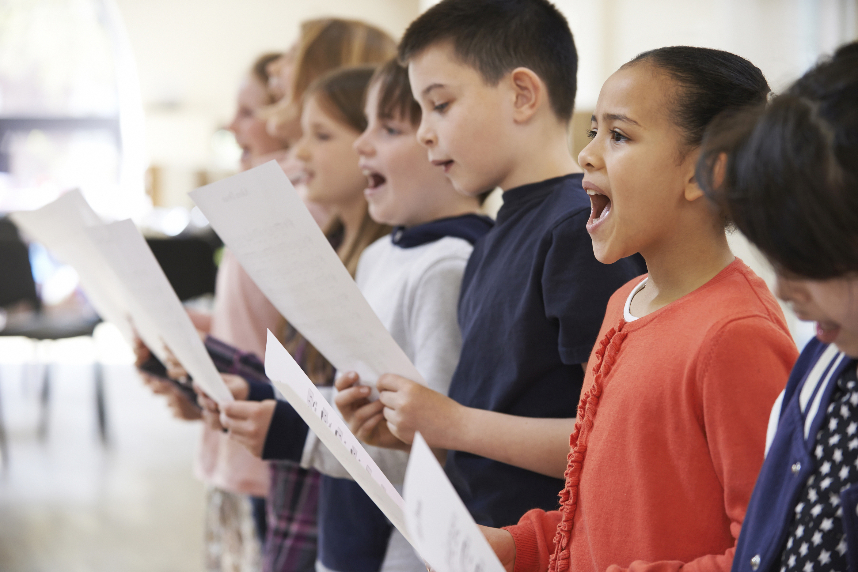 Bermuda School Of Music, The