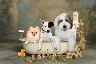 Biscuits & Baths
