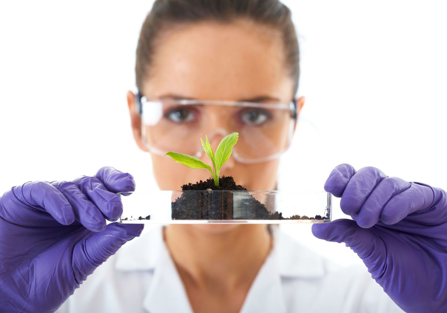 Government of Bermuda - Plant Protection Lab