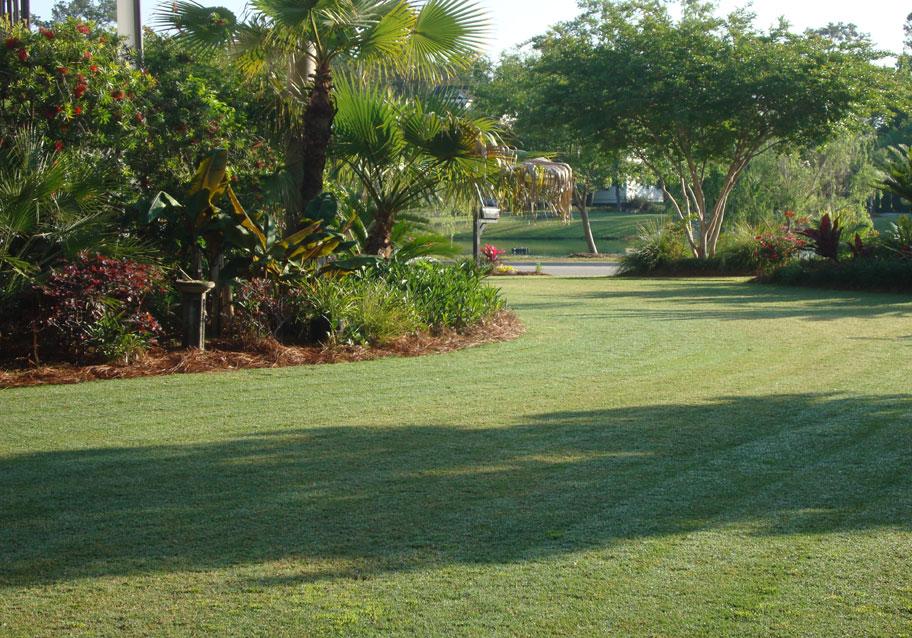 Government of Bermuda - Tulo Valley Plant Nursery