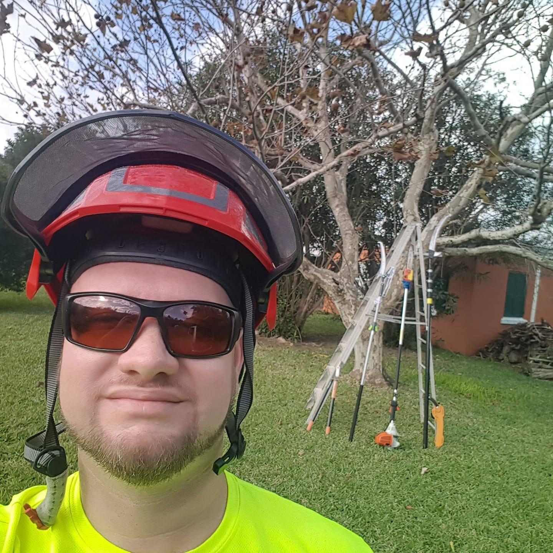 David McCann - Arborist, Tree Surgeon, Tree Service
