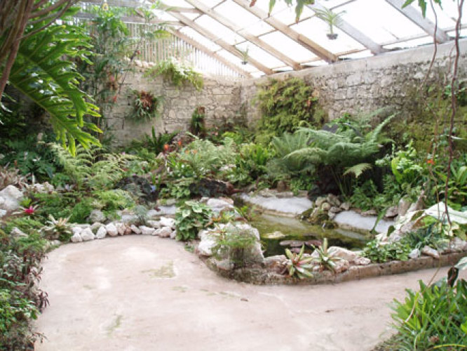 Bermuda Botanical Gardens & Visitor Centre