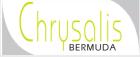 Chrysalis Bermuda
