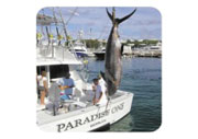 Paradise One Sports Fishing Charters
