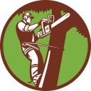 David McCann - Arborist, Tree Surgeon, Tree Service
